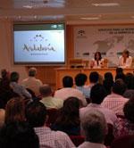 LAS CONSTRUCTORAS ANDALUZAS COMIENZAN A DESEMBARCAR EN MARRUECOS